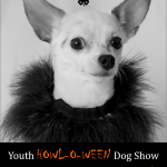 Youth Dog Show