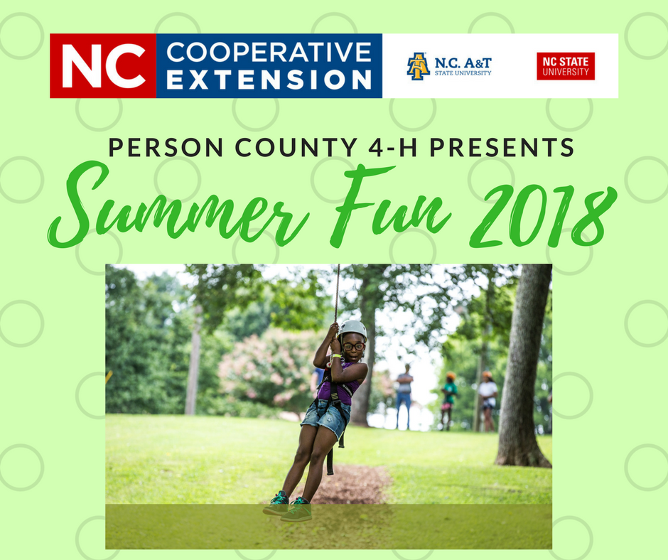 2018 Summer Fun flyer