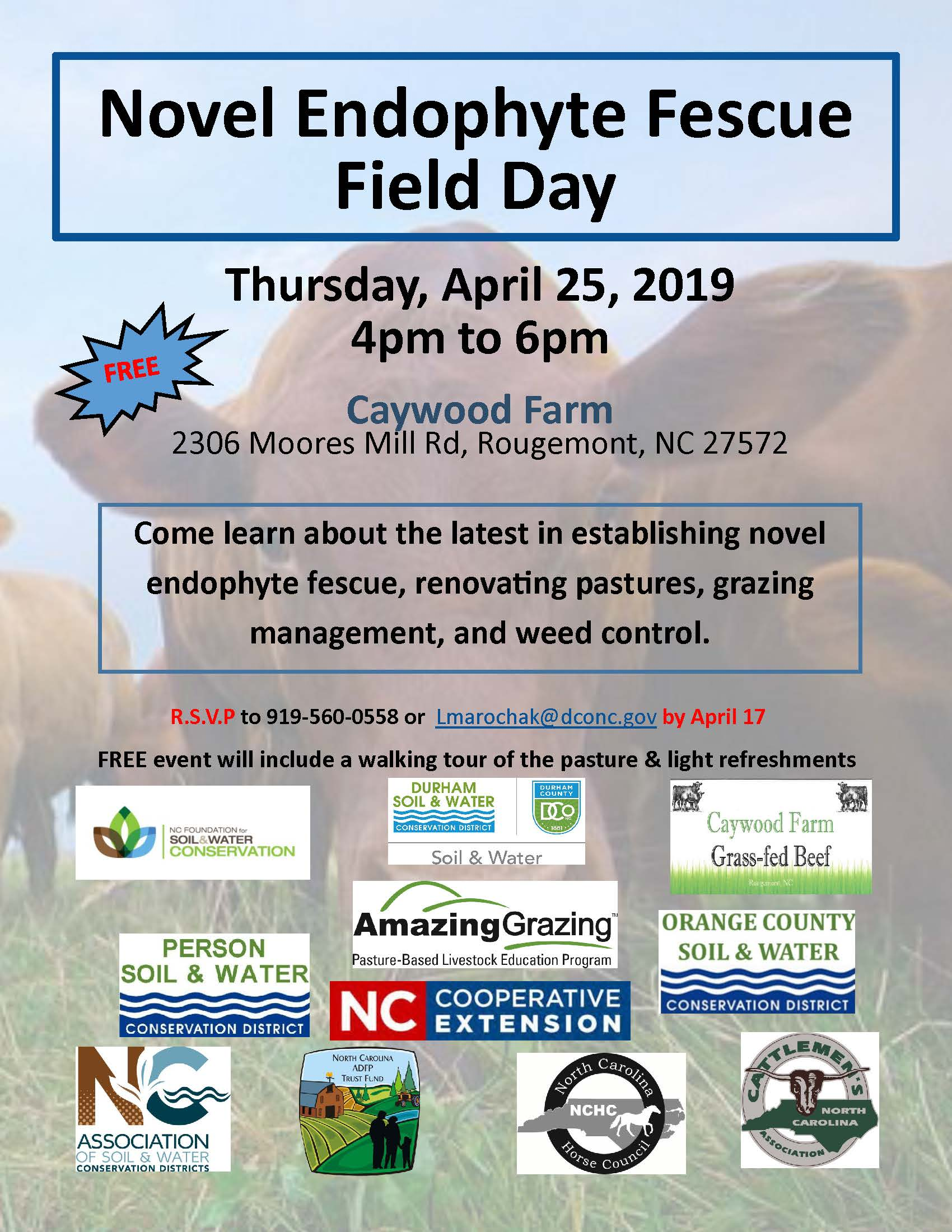 Field Day flyer image