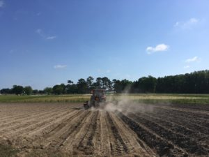 Cover photo for Early Planted Soybean Webinar RECORDING