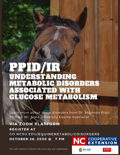 Flier with picture of horse and information about webinar