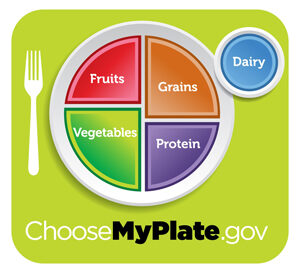 Cover photo for Food for Thought: Personalize Your Plate